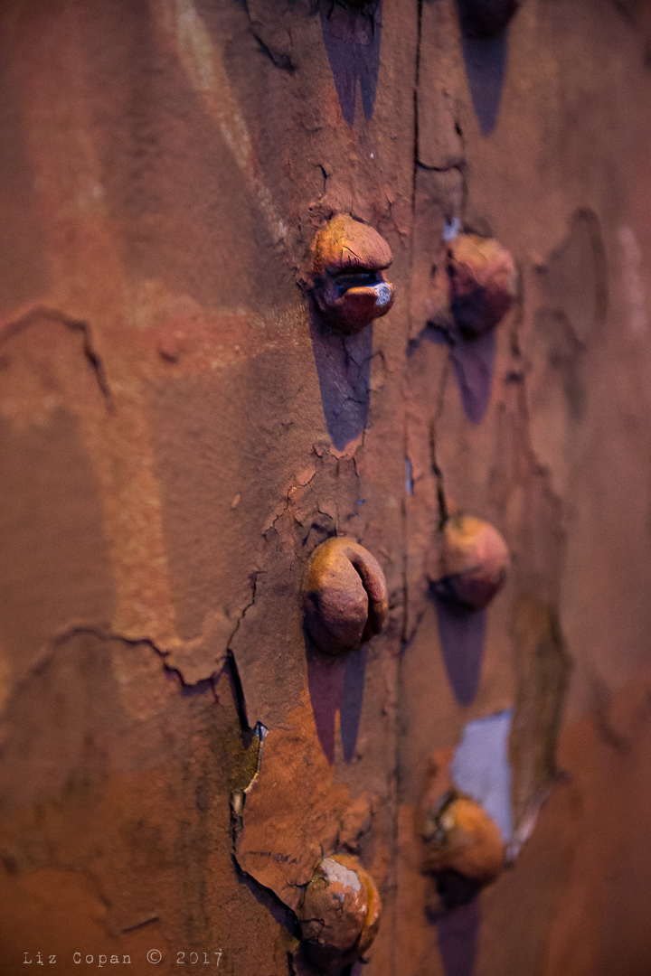 Detail of peeling rusty texture on Lambeth Bridge in London, England at twilight on March 4, 2017. (photo/Liz Copan)